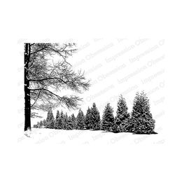 Impression Obsession Cling Stamp - Wintery Day 16418-CLG