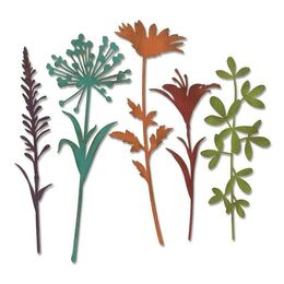 Sizzix Thinlits Dies Set By Tim Holtz (5Pk) - WILDFLOWER STEMS #2 664164