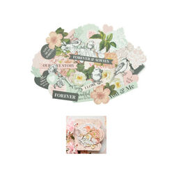 Kaisercraft Embellishments Collection - Everlasting CT950